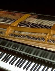 Modartt Pianoteq CP-80_1