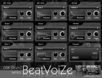 DSK DrumZ BeatVoiZe
