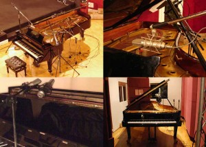 Grand Piano Collection